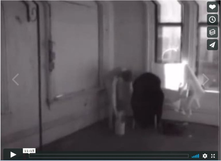 Francesca Woodman - Selected Videos, 1975-1978